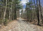 51 acres Hunting Land Bordering State Forest