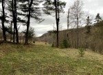 10 acres Prime Hunting Land Georgetown NY