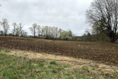 89 acres Farmland Westmoreland NY