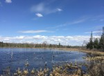 138 acres Hunting and Waterfront Land for sale!