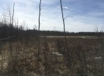 50 acres Hunting and Recreational Land for sale in Brasher, NY!