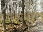12 acres Land with Remote Woodlands for sale!