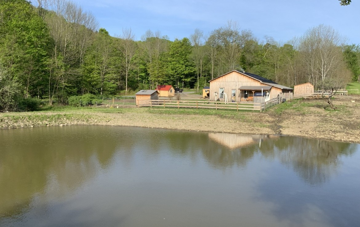 51 acres Sportsman's Retreat for Sale in Deer Country!