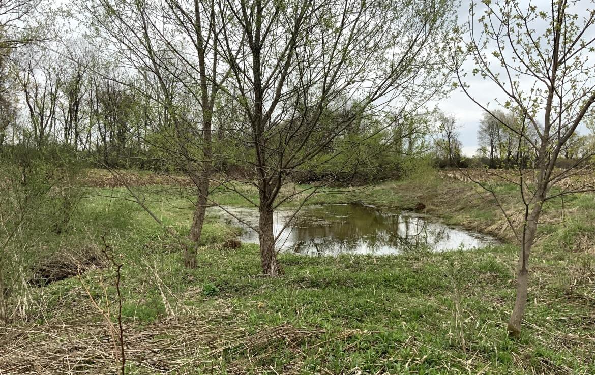 89 acres with nice mixture of level tillable land (approximately 46 acres) and the rest is mixed woodlands