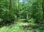 2 acres Quiet Camp Setting in Amboy NY