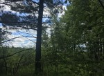 90 acres Hunting Land for sale with year-round access in Hopkinton, NY!