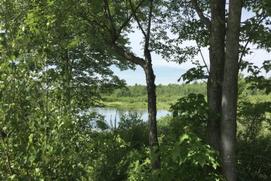 45 acres Land with Backwoods Pond Bombay NY