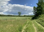 200 acres Hunting and Farm Land