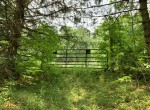 61.44 acres Hunting Land for sale with electric in Parish, NY!v