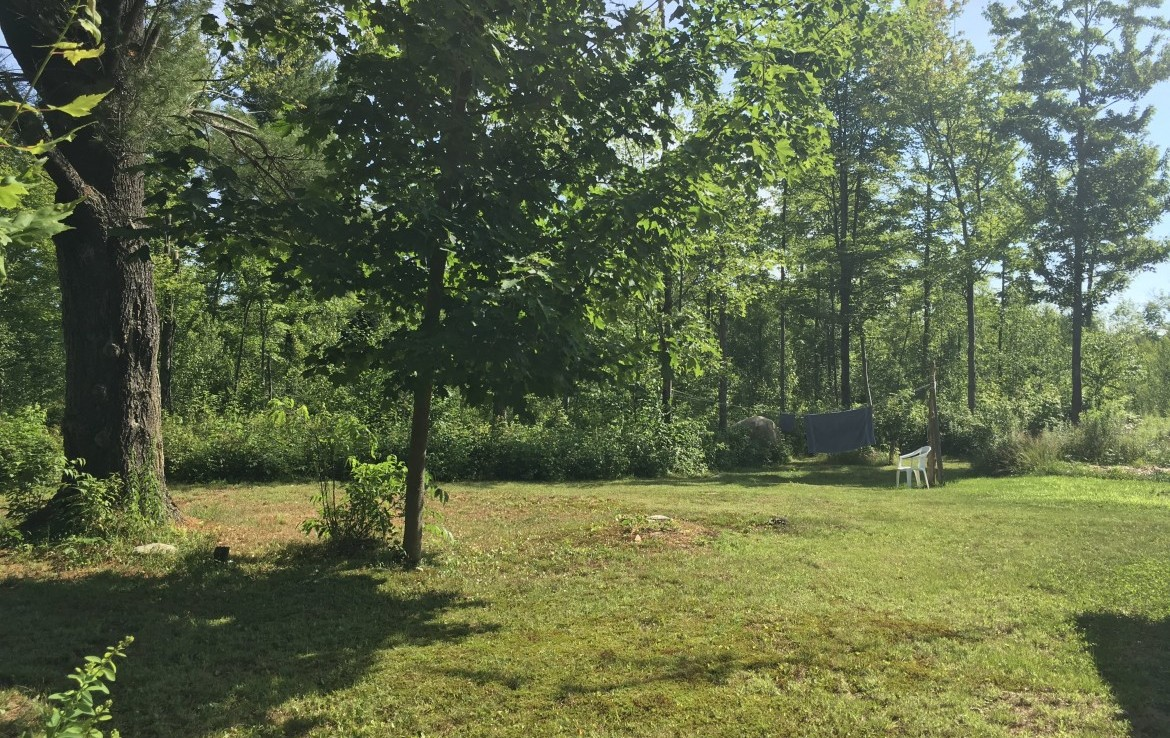 This property boasts 4 secluded acres of land with a 24'x 24' off the grid cabin that is nestled inside a ½ acre lawn.