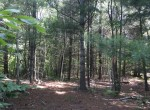 This 45 acre property has a nice trail that leads to a Cabin or Camper site overlooking an open beaver flow with pond.