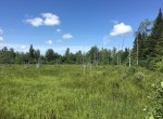 interior network of old logging trails that offer easy access for ATV's, snowmobiles or hiking.