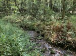 Turn-Key Deer Hunting Camp in Montgomery County, NY!