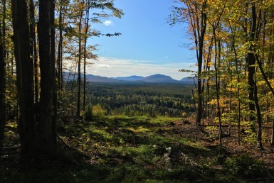 8 acre Adirondack Lot with Mountain Views