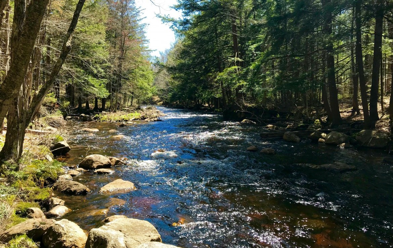 6 acres Land on Little Woodhull Creek