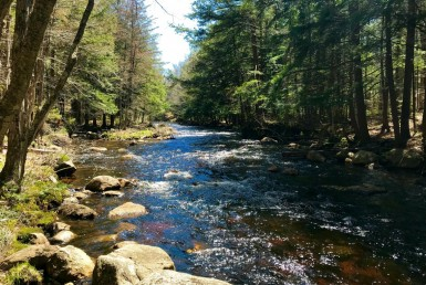 6 acres Land on Little Woodhull Creek
