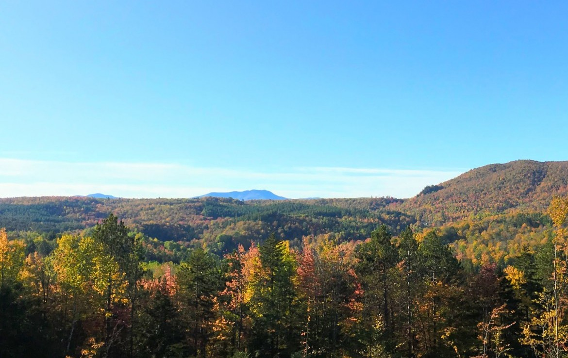 timber has already been thinned to give you a breathtaking view from the proposed building site.