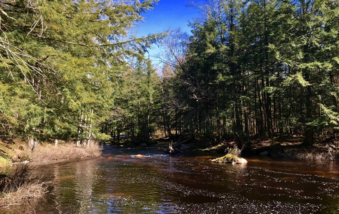 a private Adirondack lake that is in a very pretty setting and is stocked annually with brook trout.