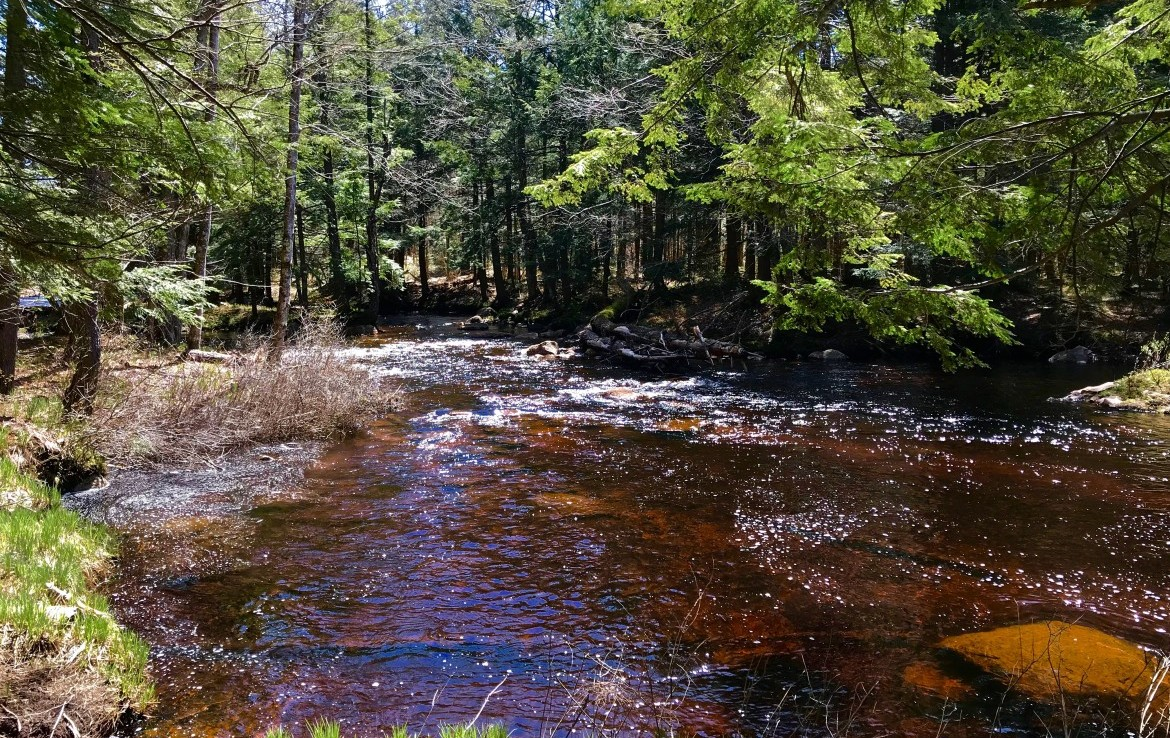 located southeast of Old Forge and is close to the Black River Wild Forest.