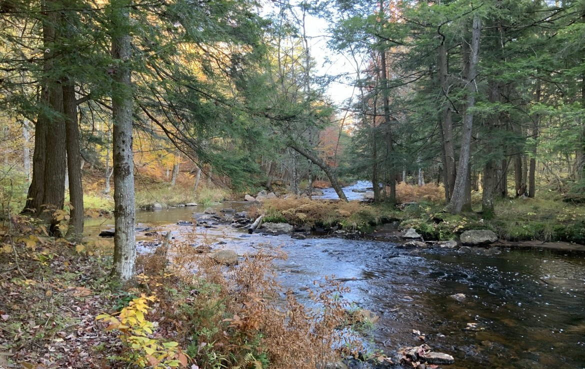 6.5 acres Adirondack Land with 700 ft Frontage along Little Woodhull Creek in Forestport, NY!