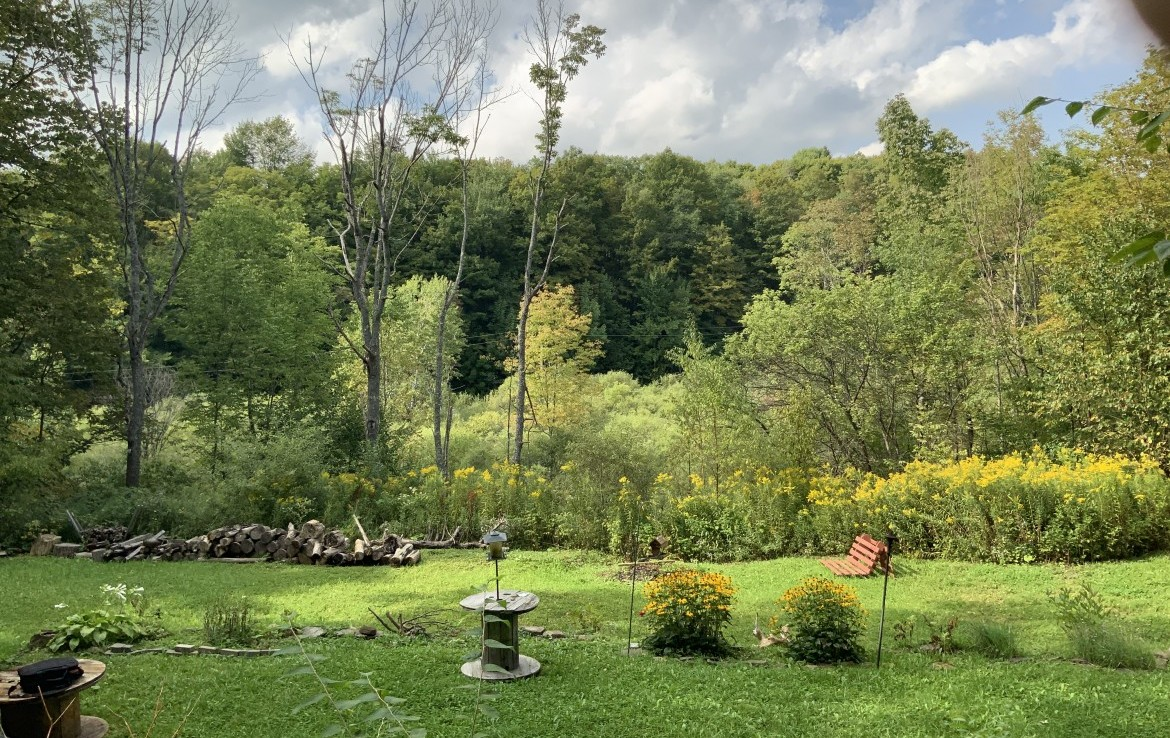 8.26 acres Mountain Side Land and Log Cabin for sale with Stream in Madison County!