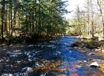 Secluded hideaway on Adirondack Trout Stream!