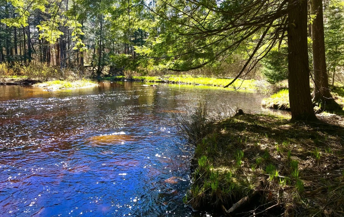 6-acre parcel of Adirondack land has 700′ of frontage on Little Woodhull Creek