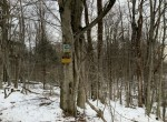 298 acres Southern Adirondack Hunting Land