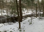 201 acres Hunting Land with Beaverdam Brook frontage and access to Lorton Lake!