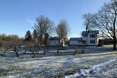 3 acre Apple Orchard and Farmhouse Clinton NY
