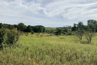 50 acres with Pond and Country views Plainfield NY
