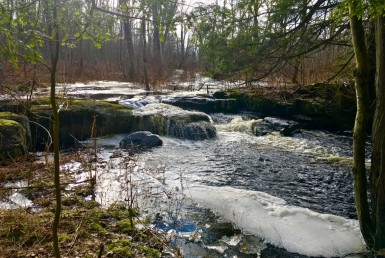 48 Acre Riverfront Property with Rustic Hunting Cabin Diana NY