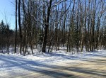 5 acre wooded country property for sale in Albion, NY