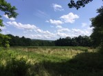 195 acres Land for Sale with Woodlands and Hunting Camp!