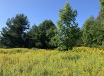 50 acres Scenic Countryside Land for Sale in Plainfield NY