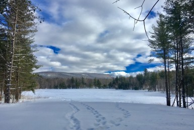 18 Acres Secluded Adirondack Property Malone NY
