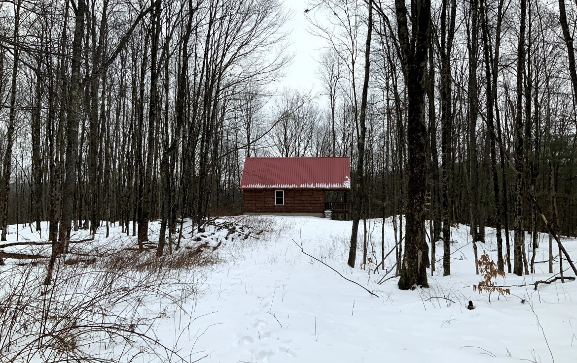 7 acres Hunting Land for Sale with Weathertight Cabin!