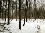 28 acres Hunting and Fishing Land for Sale Parish NY!