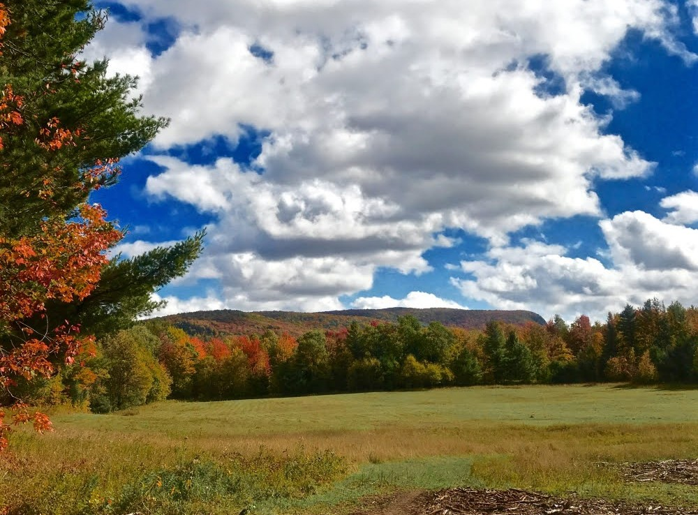 18 acres Secluded Adirondack Land for Sale, Malone, NY!