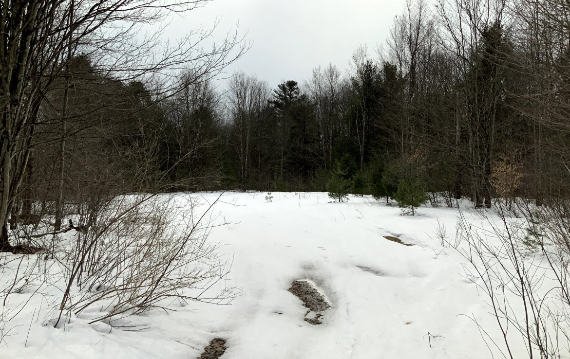 19 acres Land for Sale on ATV Trails with Electric at Road, Williamstown, NY!