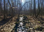 87 Acre Northern Adirondack Hunting Land Hopkinton NY