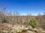87 Acre Northern Adirondack Land for Sale, Hopkinton, NY!