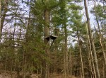 102 acres Hunting Land for sale in Hopkinton, NY!