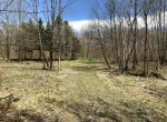11.8 acres Hunting Land with Building Site Florence NY