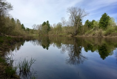 20 acre Lot on The Oswegatchie River Pitcairn NY
