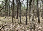 7 acres Hunting Land near Oneida Lake