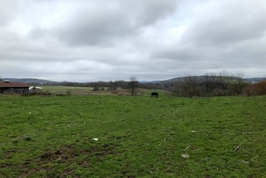 4 acre Former Dairy Farm Edmeston NY