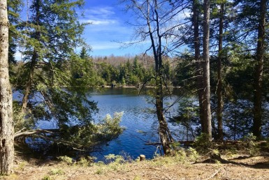 59 acre Adirondack Waterfront Property Fine NY