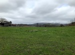 Perfect Country Hobby Farm with Pastures and Farm Buildings!