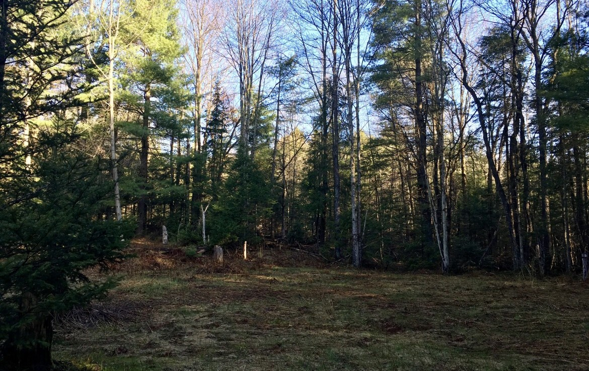 Sportsmen's Retreat with ATV Trail Acess Bordering State Land!